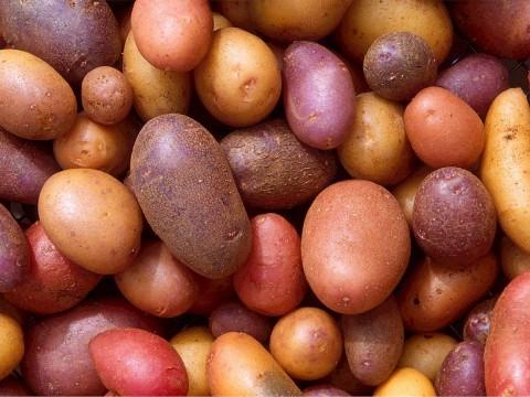 potatoes-522486_1280